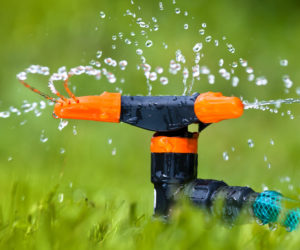 proper-lawn-watering-during-extreme-heat