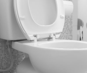 toilet-main